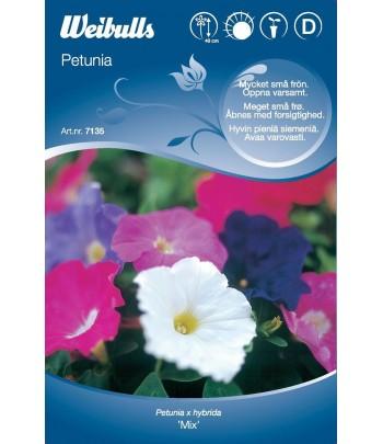 Petunia - mix