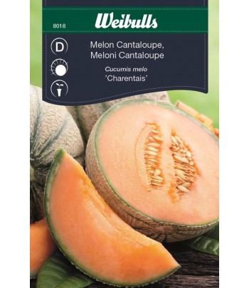 Melon, Cantaloupe - Charentais