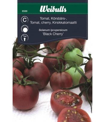 Tomat, körsbärs - Black Cherry