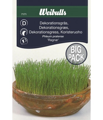 Dekarationsgräs, storportion