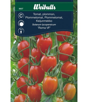 Tomat, plommon-, Roma VF