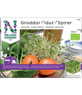 Groddar, Broccoli, Organic