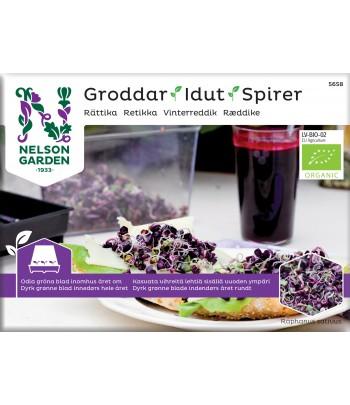 Groddar, Rättika, Organic