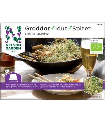 Groddar, Lins Mix, Organic
