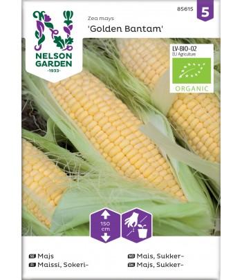 Majs, Golden Bantam, Organic