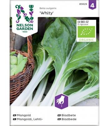 Mangold, Whity,  Organic