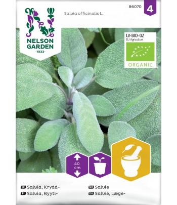 Salvia, Krydd-. Organic