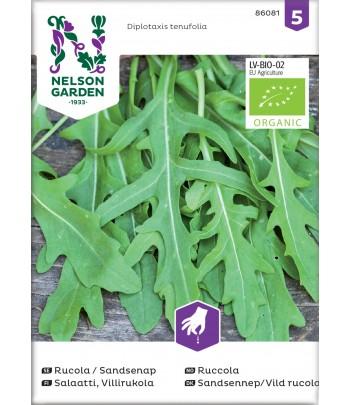 Rucola / Sandsenap, Organic