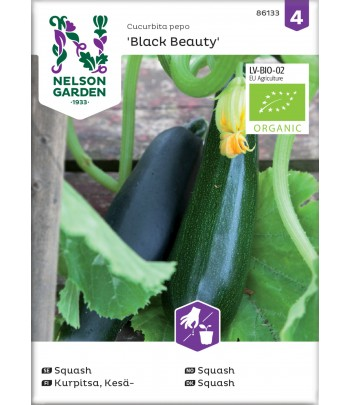 Squash, Black Beauty, Organic