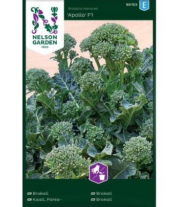 Broccoli, Apollo F1