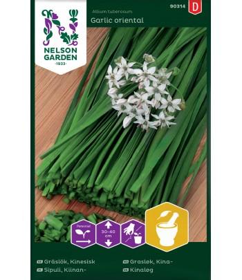 Gräslök, Kinesisk, Garlic...