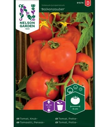 Tomat, Kruk- Balkonzauber