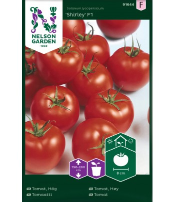 Tomat - Shirley F1