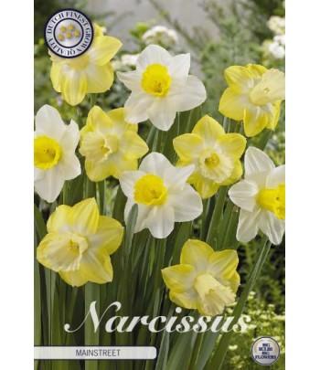 Narciss - Mainstreet