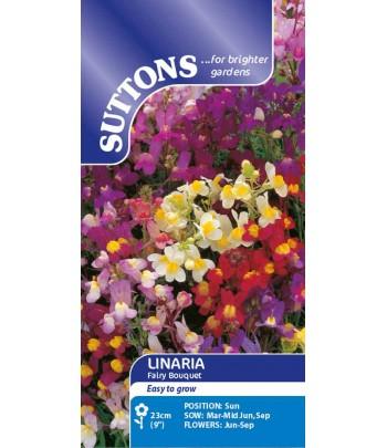 Färgsporre, Fairy Bouquet