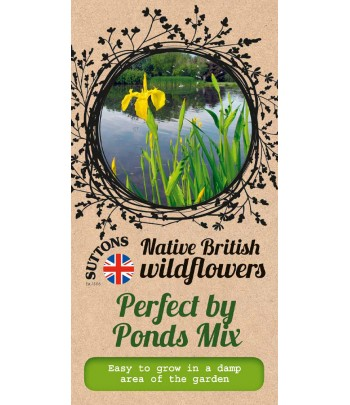 Perfect by Ponds Mix
