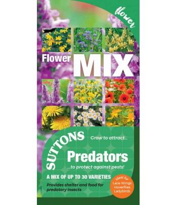 Blomstermix för pollinerar