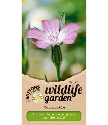 Wildlife Garden - Corncockle