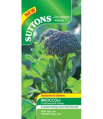 Broccoli - F1 Bellaverde...