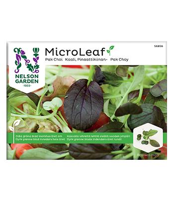 Micro Leaf, Pak Choi