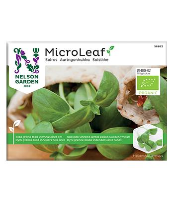 Micro Leaf, Solros