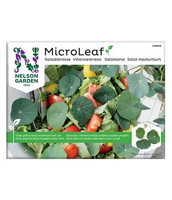 Micro Leaf, Salladskrasse