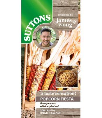 Majs Popcorn Fiesta