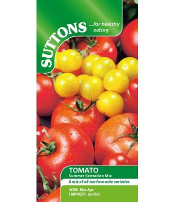 Tomat - Summer Sensation Mix