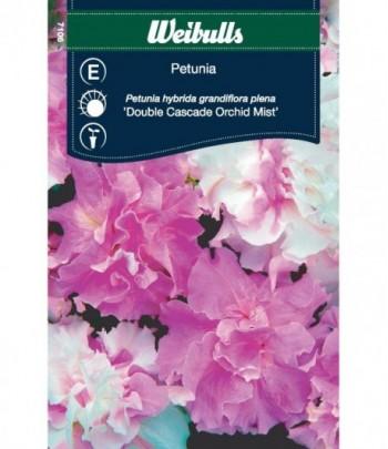 Petunia - Double Cascade...