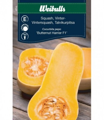Squash, vinter - Butternut...