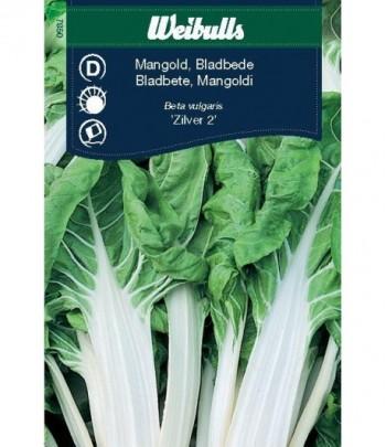 Mangold - Zilver 2