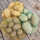 Sättpotatisen är här 🥔 I år har vi två nyheter, Octa och Timo, bägge två mycket tidig sort. Octa med sitt ljusgula skal och Timo som är vårt grannlands färskpotatis-favorit 🇫🇮 _________________________________________ #sättpotatis #potatis  #färskpotatis #potatoes #potato #stubbetorpspotatis #timo #octa #gaine #amadin #rocket #odla #odlahemma #självodlat #närodlat #trädgårdsland #köksträdgård #självhushållning #odlaiträdgården #odlaipallkrage  #frömedposten #fromedposten